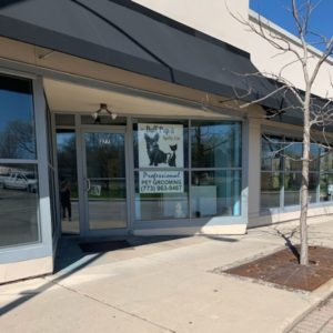 Pet Groomer on Green Bay Road Wilmette